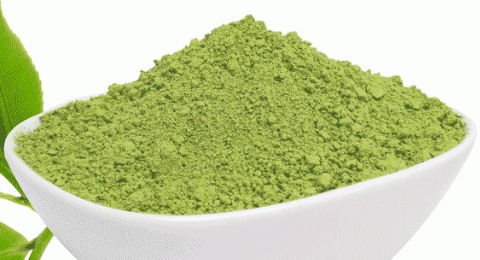 Green Tea Leaf Powder Extract 50% Polyphenol, 1 kg (2.2 lbs)