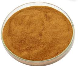 Bean, Red Kidney Bean Powder Extract 4:1, 1 kg (2.2 lbs)