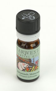 Chamomile Moroccan Essential Oil 1/6 fl oz