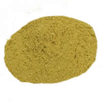 Barberry  Root Powder Extract 4:1, 1 kg (2.2 lbs)
