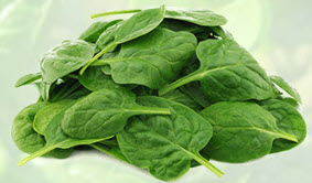 Spinach  Leaf Powder Extract 4:1, 1 kg (2.2 lbs)