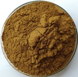 Magnolia Bark Powder Extract 4:1, 1 kg (2.2 lbs)