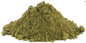 Peppermint Leaf Powder Extract 4:1, 1 kg (2.2 lbs)