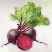 Beet  Root Powder Extract 4:1, 1 kg (2.2 lbs)